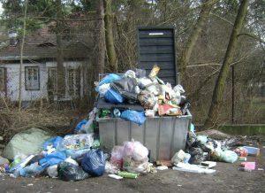 Washington DC Trash Pickup